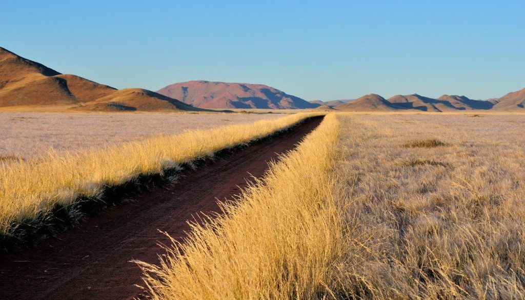 road-grass-and-mountain-landscape-P88SABD